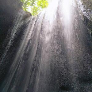 Tukad Cupung  トゥカッドチュプン の滝