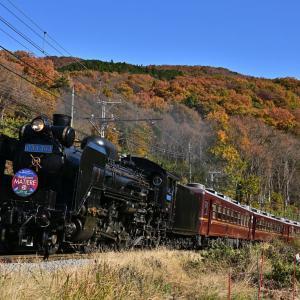 2019年11月30日 秩父鉄道 「SLパレオエクスプレス」5001・5002レ C58 363+12系