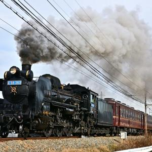 2019年12月1日 秩父鉄道 「SLパレオエクスプレス」5001・5002レ C58 363+12系(曇られ/快晴)