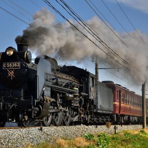 2019年2月24日 秩父鉄道 「SLパレオエクスプレス」5001・5002レ C58 363+12系