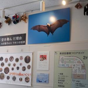 明日10月29日から写真展「哺乳類が空を飛んだ理由 大沢夕志&大沢啓子のコウモリの世界」が始まります。