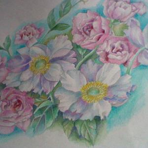 ★★ 色鉛筆画「白と紫のクレマチス」暫くです・・・・。