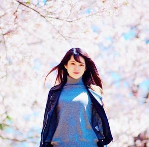 4/4 HCCC春のお花お散歩撮影会開催のお知らせ