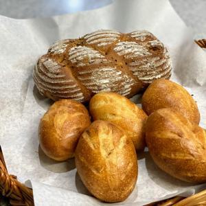 新規クラス 単発天然酵母パン教室