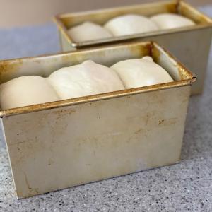 天然酵母 ミルク食パン