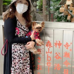 久松留守!江戸時代の、インフルエンザ 流行り風邪の撃退法!