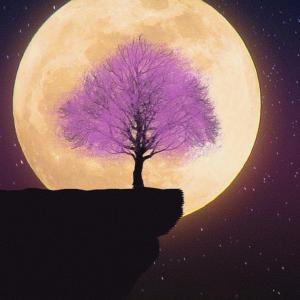 やぎ座満月に備えて、新月満月の儀式をおさらいしませんか?