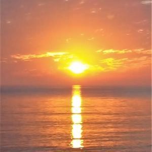 朝ランの景色と父の日のプレゼント・・・