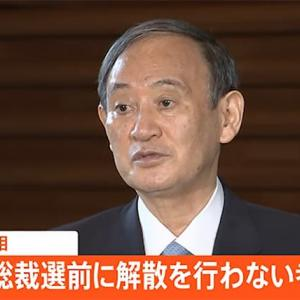菅総理にとってあまりに痛すぎる「9月中旬解散案」の流布