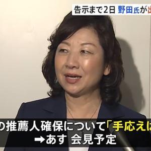野田聖子を担ぐ黒幕と推薦人の顔が見てみたい