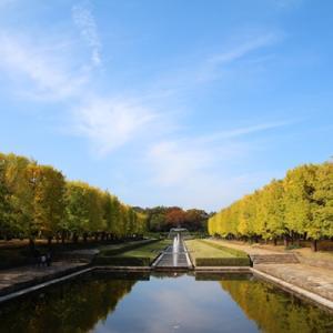 昭和記念公園の紅葉はまだまだだけど・・・・・