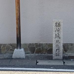東海道五十三次!大津宿から草津宿へ(2)