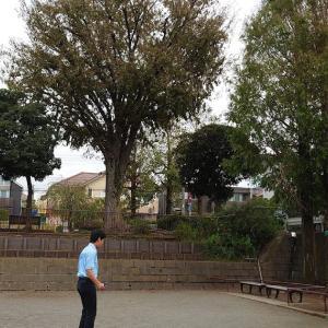 神奈川の先輩たちの活躍に勇気づけられた日曜日
