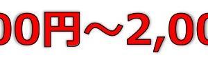 WDBココ(7079)のIPO(新規上場)初値予想とIPO幹事配分数!