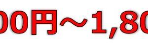 ウイルテック(7087)のIPO(新規上場)初値予想とIPO幹事配分数!