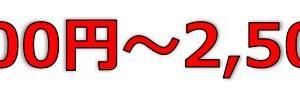 ビザスク(4490)のIPO(新規上場)初値予想とIPO幹事配分数!