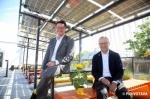 太陽光発電、まっしぐら