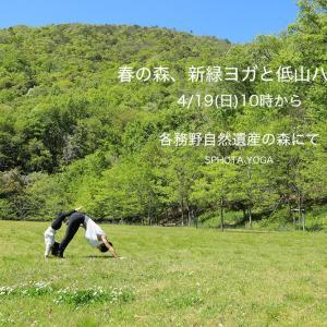 4/19(日)10時から各務野自然遺産の森にて「春の森、新緑ヨガと低山ハイク」開催!
