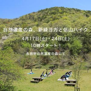 4/17日(土)「自然遺産の森、新緑ヨガと低山ハイク」中止のお知らせ