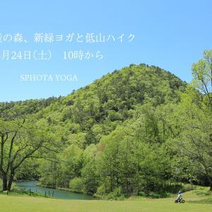 「自然遺産の森、新緑ヨガと低山ハイク」本日24日(土)10時から開催!