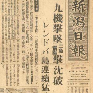 新潟日報 レンドバ島