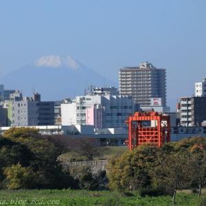 荒川河川敷から富士山