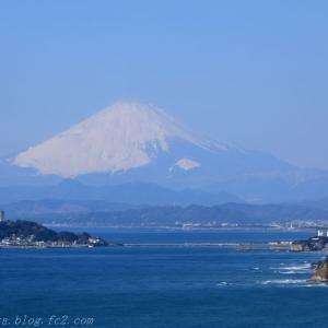 江ノ島と雪化粧した富士山