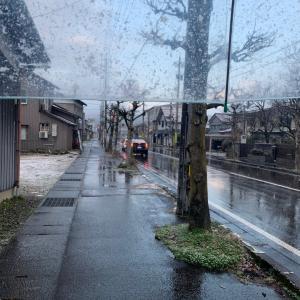 (大野市天気)降り出した雪!クルマの運転などご注意を