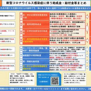 〔5月15日時点まとめ〕事業者支援や個人給付など、大野市新型コロナウイルス感染症対策整理表