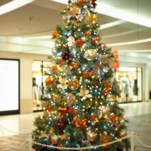 クリスマス  ♪
