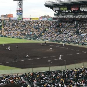 甲子園に阪神戦を見に行ったよ。