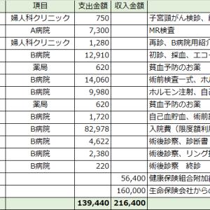 5.治療にかかった費用【レゼクトスコープ子宮筋腫手術】