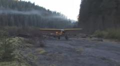 ブッシュプレーンが森林に離着陸する様子を眺めてみよう