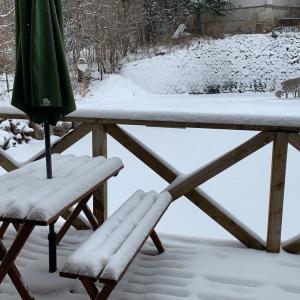 予報通り雪