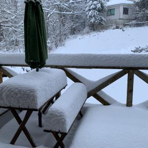 予報通りの雪
