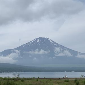 久々に富士山見えた!