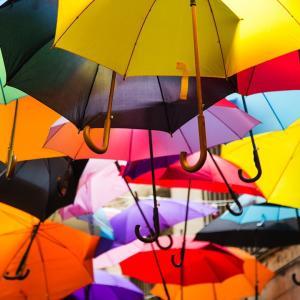 梅雨時期を楽しく