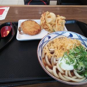 久し振りのうどん 「丸亀製麺所」
