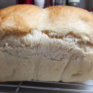 りんご酵母de食パン