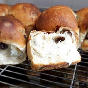 ふわふわぶどうパン
