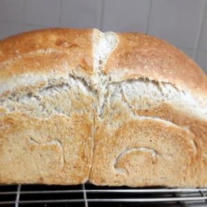 桃の種からパン♪