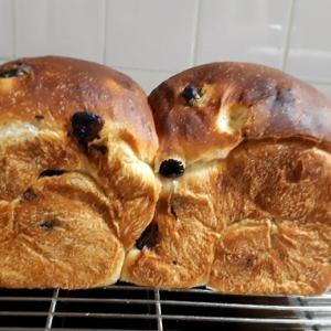 高級仕様のぶどうパン