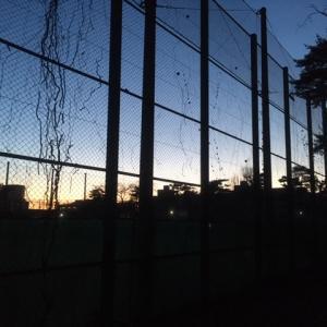 サンデーHOUちゃん2/9号