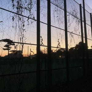 サンデーHOUちゃん11/15号