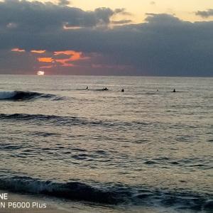 今年の冬は奄美でサーフィン。