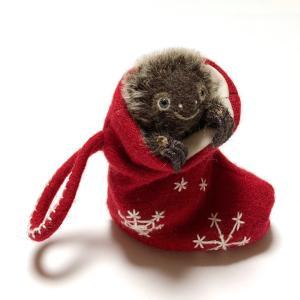 クリスマスの靴下に入ったナマちゃん