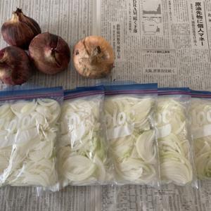 夏野菜とモモイロインコのビーズストラップ