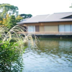 【秋の茶道〜月点前の茶箱】