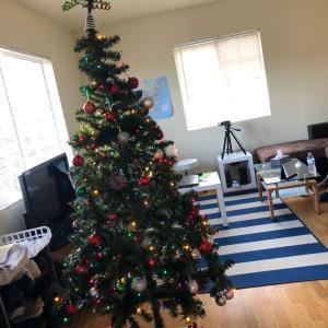 初クリスマスツリー★長男がサンタさんに頼む可愛い物