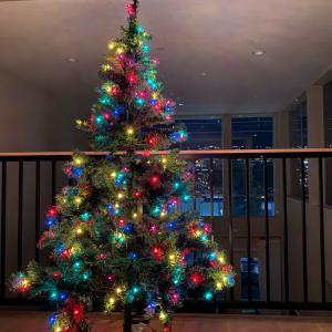 我が家のクリスマスツリーは3つ